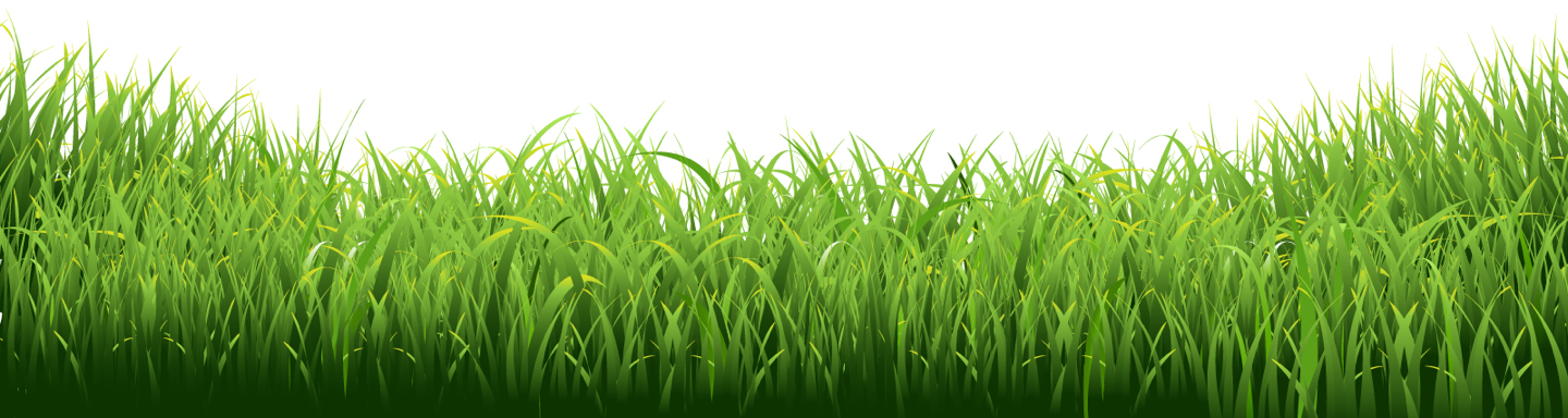 Grass Image on Footer